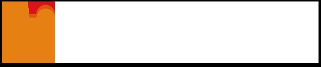 株式会社バイタリフィ